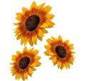3 x Sunflower Flower Car,Camper Van Stickers Decals