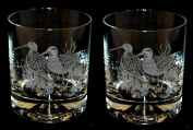 Snipe Whisky Tumbler Glasses (pair) Bird Gift