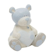 Tracey Russell - Bear Money Box