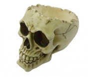 Nemesis Now 'Lobo' 14.5cm Gothic Skull Bowl