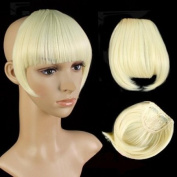 Girls False Bangs Neat Fringe Hairpiece Side Clip-on Hair Extensions Extension Light Blonde 613#