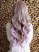 2013 New Two Tone Long Wavy Highlight Hair Wig Wigs Brown Mixed Purple K099