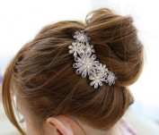 Beautiful Jewellery Flowers Crystal Hair Clips - For Hair Clip Beauty Tools