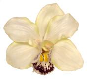 Cymbidium Orchid Artificial Flower Hair Clip/Pin Brooch, Cream Colour