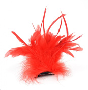Touch of Nature Fancy Feather Clip, 25cm