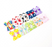 Ema Jane - Assorted Vintage Hair Bow Clips (10 Matching Pairs)