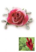 Single Silk Maui Tea Rose Pick- Pink