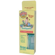 Earth's Best Toddler Toothpaste Strawberry Banana -- 45ml