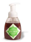 Neem Oil/Bark Foam Soap ~ Spearmint ~ Kids LOVE it!