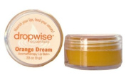 Dropwise Essentials Certified Organic Aromatherapy Lip Balm - Made with Pure Essential Oil Blends