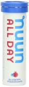 Nuun All Day Hydration, Natural Vitamin Enhanced Drink Tablets, Blueberry Pomegranate
