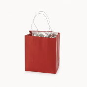 Mini Red Gift Bags (2 dz)