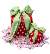 lilywrap Red Polka-Dots Eco Friendly + Reusable Stretchy Gift Wrap