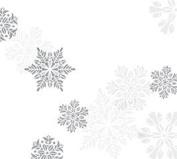 Let It Snow (60cm w X 100'l) Cellophane Roll