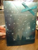Bath & Body Works Metalic Aqua Fold Top Gift Box with Bow - 9.5cm x 7.9cm x 18cm H useable space