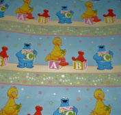 Sesame Street & Elmo BABY Gift Wrap Roll Wrapping Paper & Bows - A, B, C for Baby