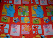 Sesame Street & Elmo Gift Wrap Roll Wrapping Paper & Bows - Birthday, Any Occasion - Oscar, Big Bird, Abby, Grover, Bert, Ernie, Cookie, Zoe