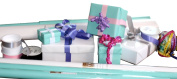 The Gift Wrap Company Solidly Chic Gift Wrap and Ribbon Ensemble