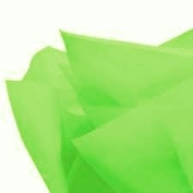 Cakesupplyshop Packaged 48sheets Groovy Green Gift Wrap Pom Pom Tissue Paper 20x30