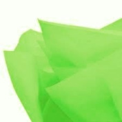 100Sheets Cakesupplyshop Packaged Groovy Green Gift Wrap Pom Pom Tissue Paper 15x20