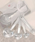 Stainless Steel Measuring Spoons in Gift Box