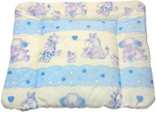 Blue hearts Soft changing mat
