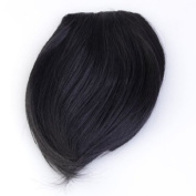 Jovivi Clip on Clip in Front Hair Bangs Fringe Hair Extension Straight