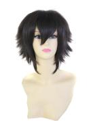 FENGSHANG Beauty Kirigaya Kazuto Anime Party and Short Cosplay Wigs Black 36cm