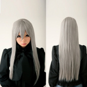 New Long Silver Grey Straight Anime Cosplay Costume Party Hair Full Wig
