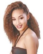 Femi Wet and Wavy Bulk 100.1% human hair 41cm Colour #1