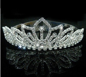 RayHot Clear Crystals Wedding Bridal Pageant Tiara/Hair Hoop FG10011