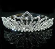 RayHot Clear Crystals Wedding Bridal Pageant Tiara/Hair Hoop FG10011