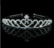 RayHot Gorgeous Clear Crystals Wedding Tiara FG10016