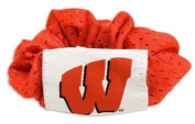 Wisconsin Badgers Hair Twist Ponytail Holder