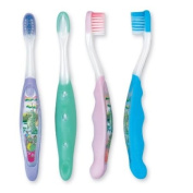 Youth Dino Toothbrushes - 48 per pack