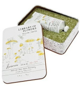 Willow & Water Handcreme - Nectar + Pollen Chapter