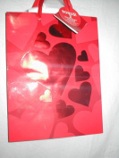 Dark Red with Red and Reflective Hearts Gift Bag, 25cm X 19cm