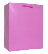 Hallmark's Pink Gift Bag - 3KHB 108F