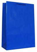 Hallmark's Blue Gift Bag - 3KHB 264J