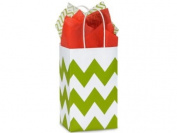Apple Green & White Chevron Rose Paper Shopper Gift Bag - Pack of 10