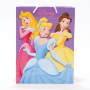 Lot of 4 Disney Princess Collection (Cinderella, Belle, Sleeping Beauty, Ariel, Snow White, Jasmine) Medium Paper Gift Bag with Handles