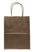 Premier Packaging AMZ-230143 15 Count Metallic Kraft Shopping Bag, 21cm by 27cm , Silver