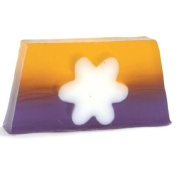 Orange & Patchouli Glycerin Soap Slice - Bath Bubble & Beyond 100g