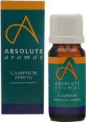Absolute Aromas Camphor Essential Oil