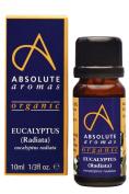 Absolute Aromas Organic Eucalyptus Radiata Essential Oil