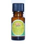Natural By Nature Organic Ylang Ylang Oil 10ml