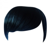 Fringe Bang Clip in Hair Extensions STRAIGHT Jet Black #1