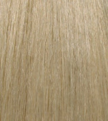 HerStyler White Blonde Elite Extension Synthetic Hair Extension