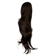 Hothair 70cm Glam Clip in Ponytail Chocolate Copper