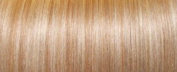 Human Hair Extensions Remy Full Head Clip In - 27/613 Blonde Mix Highlights